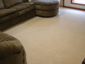 AMAZING! Referral removed all stains from this carpet.