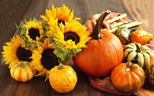 BLOG - Fall Harvest Scene