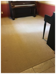 BLOG - Referral Cleans Dirty Carpet After
