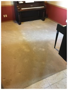 BLOG - Referral Cleans Dirty Carpet Before