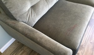 BLOG - Referral Removes Red Sharpie from Sofa Before