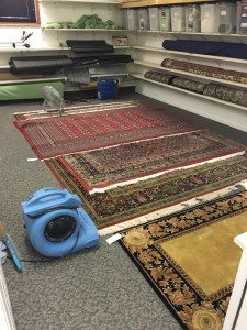 BLOG - Rug Cleaning in Fort Wayne