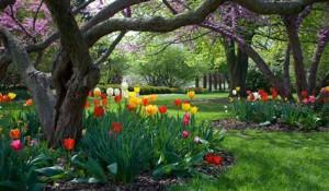 BLOG - Spring In Fort Wayne