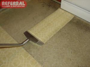 Carpet - 14 Kitchen Carpet Clean Up Like New