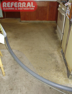 Carpet - 14 Kitchen Carpet Is Filthy!