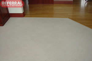 Carpet - 2 Carpet In Fort Wayne Home Cleaned Up Like New For Referral