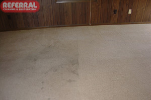 Carpet - 4 Referral's Cleaning Make Spot Disappear!