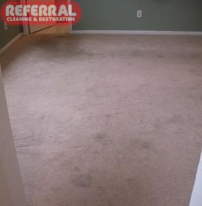 Carpet - 6 Dirty Bedroom Carpet In Fort Wayne Home