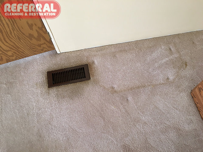 Carpet Cleaning Upholstery Cleaning Tile Cleaning Water Damage