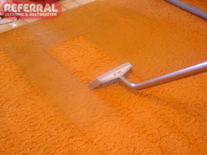 Carpet - Bight Orange Carpet Cleans Up Great