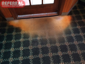 Carpet - Bleach Water Spilled onto carpet while mopping tile bleaching out the carpets color