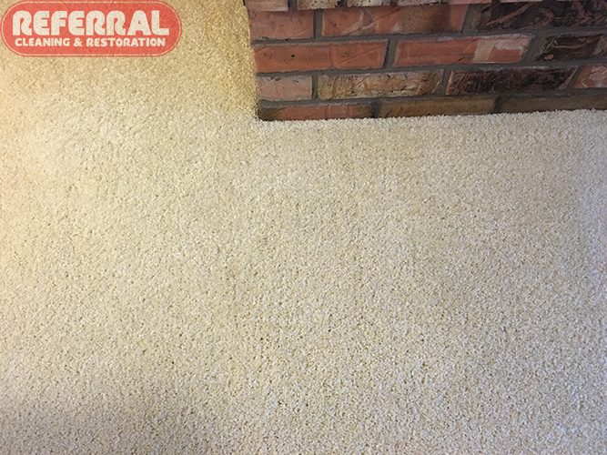 Carpet - Blood Spots Removed Completely from carpet in Fort Wayne