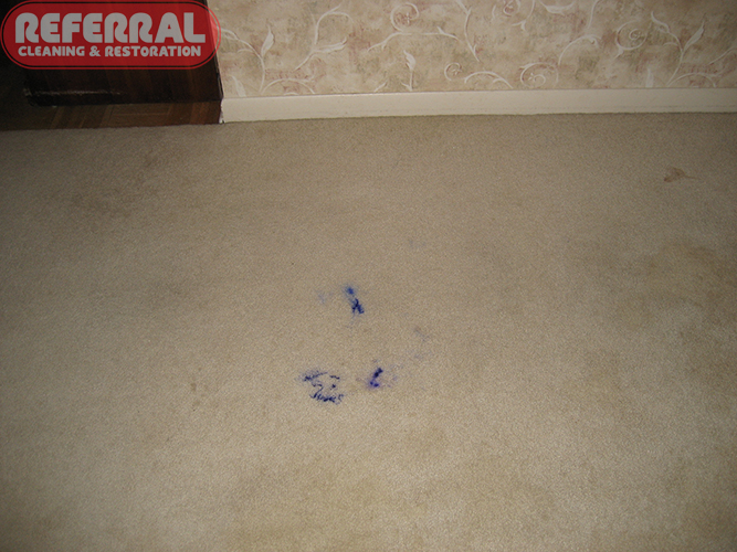 Carpet Blue Ink Stain On Carpet Fort Wayne In