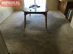 carpet-carpet-3-1-very-dirty-walk-ways-on-dining-room-carpet-at-fort-wayne-home