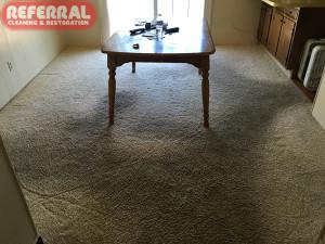 carpet-carpet-3-1-very-dirty-walk-ways-on-dining-room-carpet-at-fort-wayne-home
