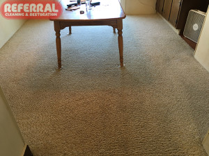 carpet-carpet-3-2-referrals-cleaning-restored-this-carpet-to-like-new-condition