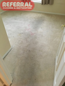 carpet-carpet-6-1-soiled-bedroom-carpet-traffic-area-in-fort-wayne-home