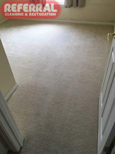 carpet-carpet-6-2-fort-wayne-bedroom-carpet-cleaned-by-referral