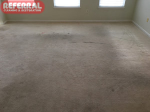 carpet-carpet-7-1-soiled-and-stained-carpet-in-fort-wayne-rental