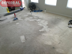 carpet-carpet-7-2-removing-spots-and-red-dye-stains-from-dirty-carpet-in-fort-wayne
