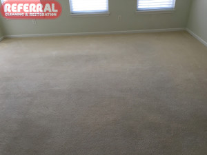 carpet-carpet-7-3-carpet-restored-to-like-new-condition