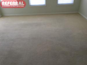carpet-carpet-7-3-carpet-restored-to-like-new-condition