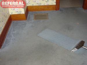 Carpet - Carpet Cleaning Contrast On Blue Dirty Nylon Carpet