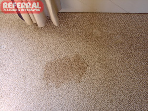 Carpet - Coffee Stain On Carpet