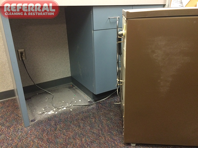 Cleaning Photos Fort Wayne In Referral Cleaning