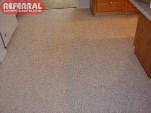 Carpet - Food & Drink Stains Removed From Light Colored Kitchen Carpet