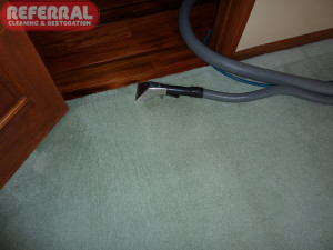 Carpet - Getting Our Knees To Clean All Edges