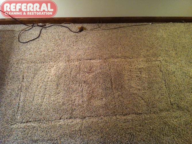 Carpet - Grease-Oil cleaned out of carpet Completely