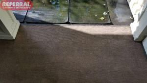 Carpet - Green Mildew Growing on Carpet - After