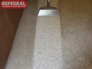 Carpet - Multilevel Loop Olefin Berber Carpet Cleaning Contrast
