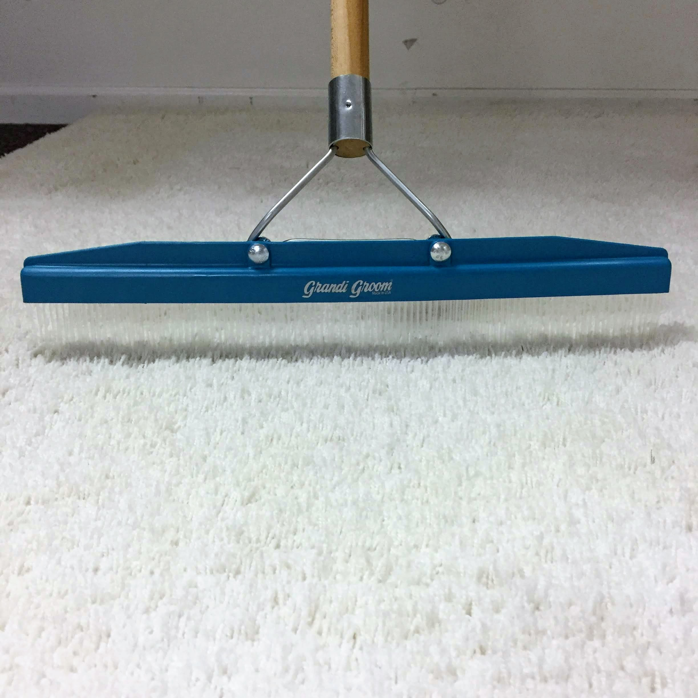 Carpet Groomer Reviews Carpet Vidalondon