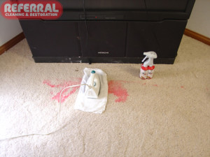 Carpet - Red Kool Aid Stain being removed from carpet