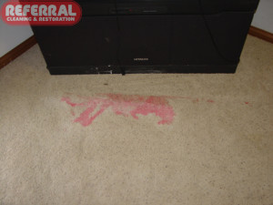Carpet - Red Kool Aid Stain on Carpet