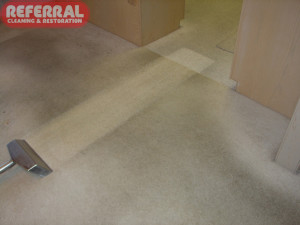 Carpet - Referral Cleaning Out Heavily Soiled Traffic Area