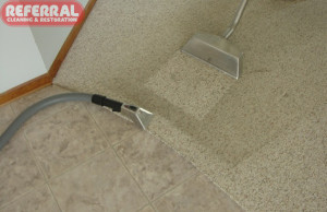 Carpet - Referral uses a hand tool to carefully clean carpeted edges along hard surfaces