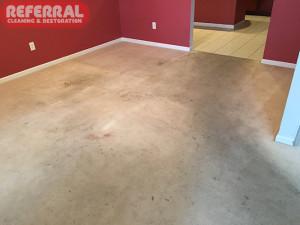 Carpet - Soiled Dining Room Carpet Traffic Area In Fort Wayne House