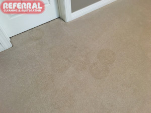 Carpet - Spots left behind from do it yourself spot cleaner