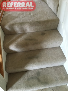 carpet-steps-1-1-dirty-carpeted-steps-before-cleaning