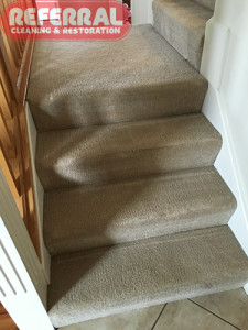carpet-steps-1-2-carpeted-stairs-clean-up-like-new-after-referral-svisits-this-fort-wayne-home
