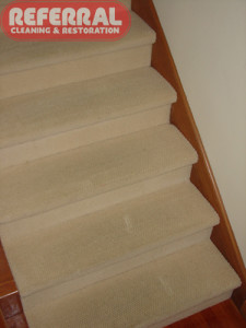 Carpet - Steps Wool Carpet Clean Up Like New - Without Tool