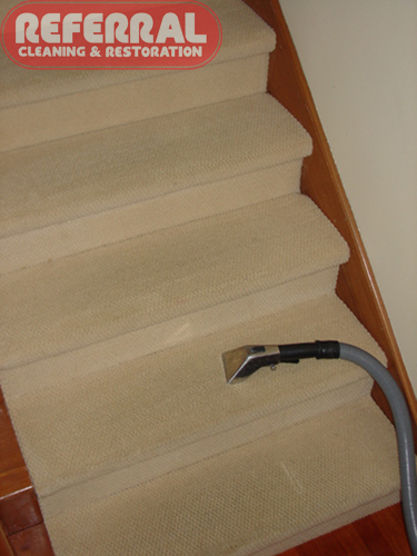 Carpet - Steps Wool Carpet Cleans Up Like New - With Hand Tool