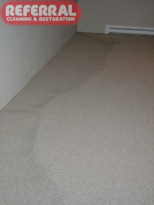 Carpet - Water Stain on carpet from flooded basement