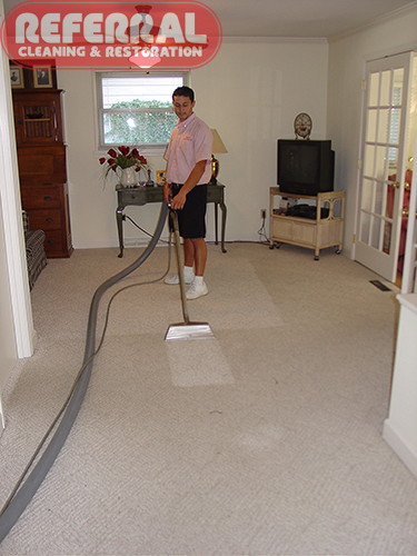 Matrix Carpet Cleaning Ta Fl 25 Best Ideas About Cost Of On