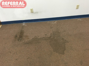 commercial-commercial-5-1-drink-spills-on-carpet-at-fort-wayne-business-lunchroom