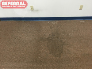 commercial-commercial-5-2-clean-dirty-contrast-of-soiled-carpet