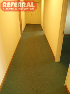 Dirty Office Hall Carpet